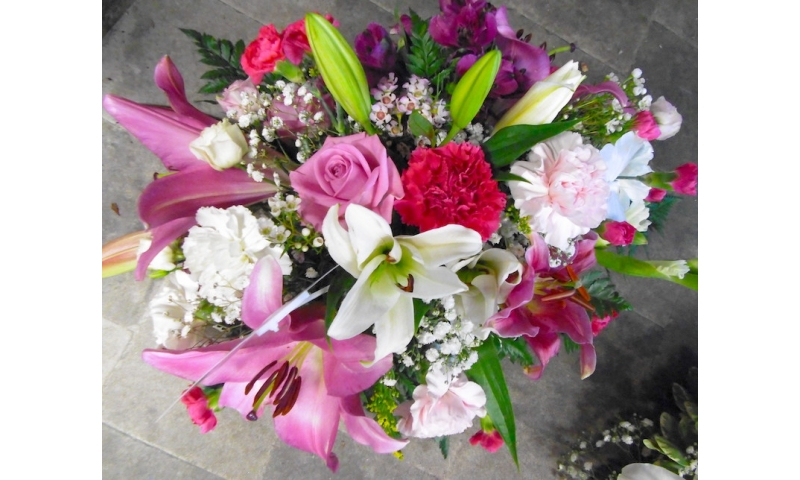 Blooming pink posie